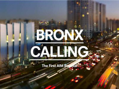 Kira Nam Greene Bronx Calling: the First AIM Biennial